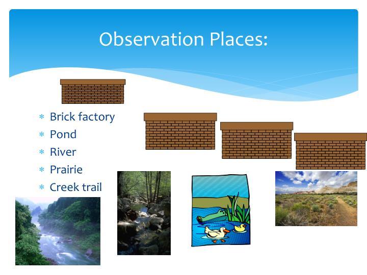 Observation Places: