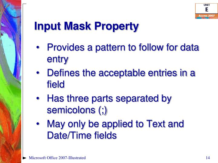 Input Mask Property