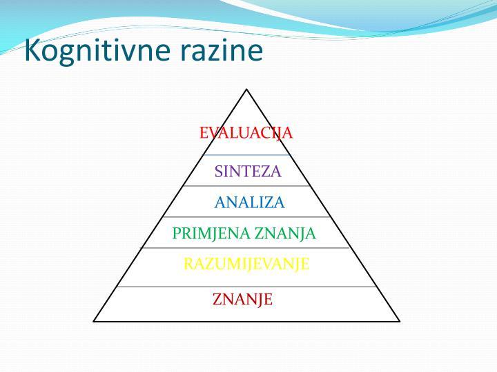 Kognitivne razine