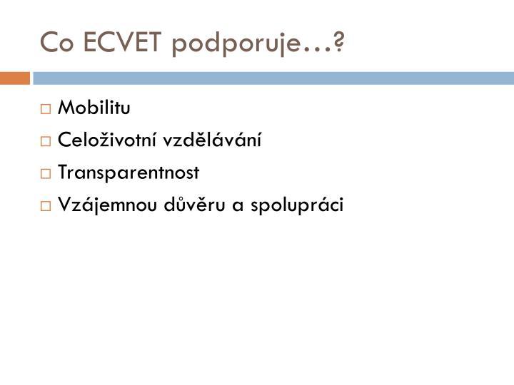 Co ECVET podporuje…?