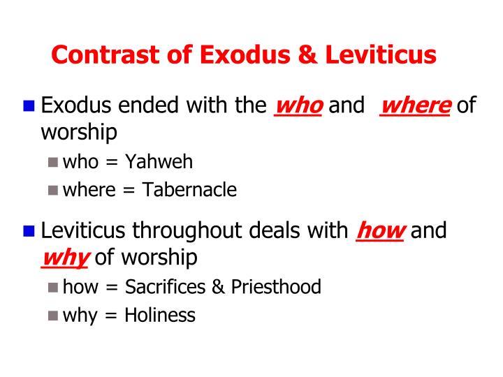 Contrast of Exodus & Leviticus