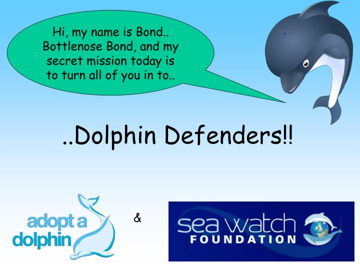Dolphin defenders