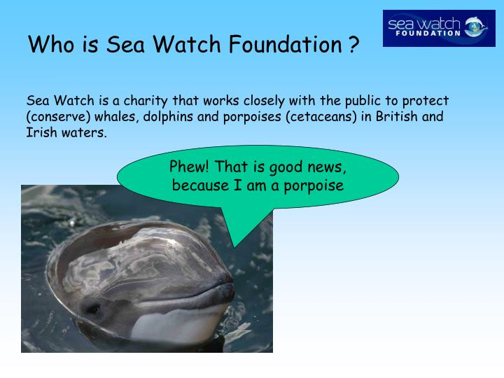 Who is Sea Watch Foundation ?