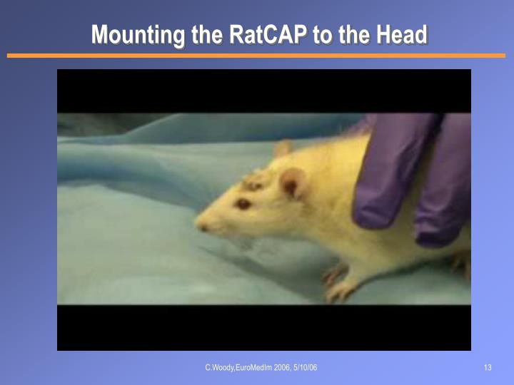 Mounting the RatCAP to the Head