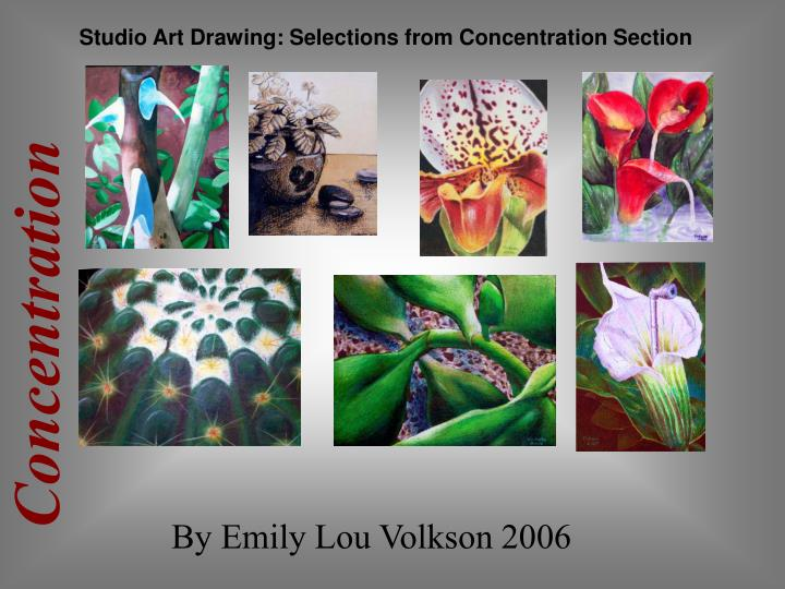Studio Art Drawing: Selections from Concentration Section