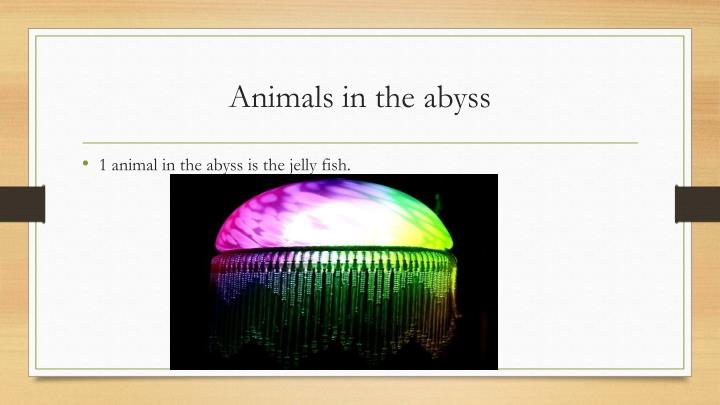 Animals in the abyss