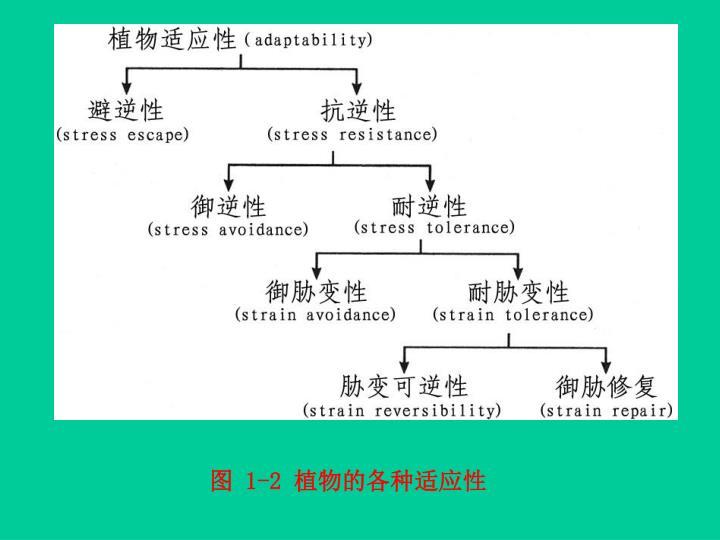图 1-2 植物的各种适应性