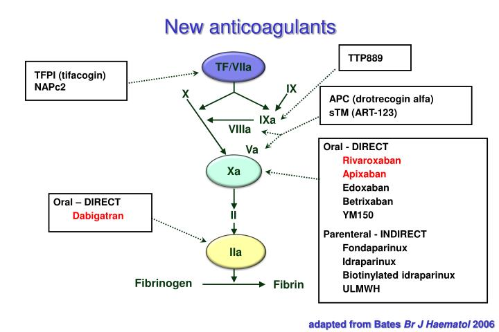 New anticoagulants
