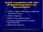 include consultations with other un special rapporteurs and representatives
