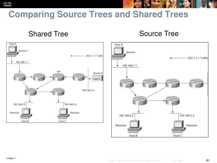 Comparing Source Trees and Shared Trees