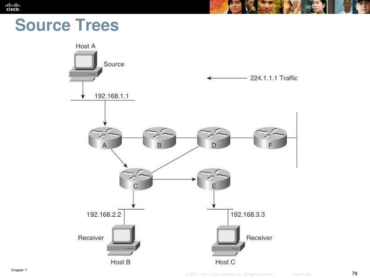 Source Trees