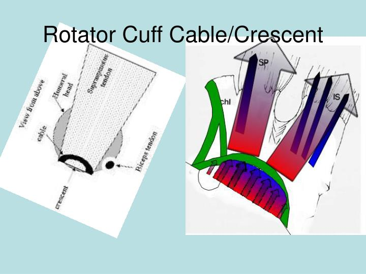 Rotator Cuff Cable/Crescent