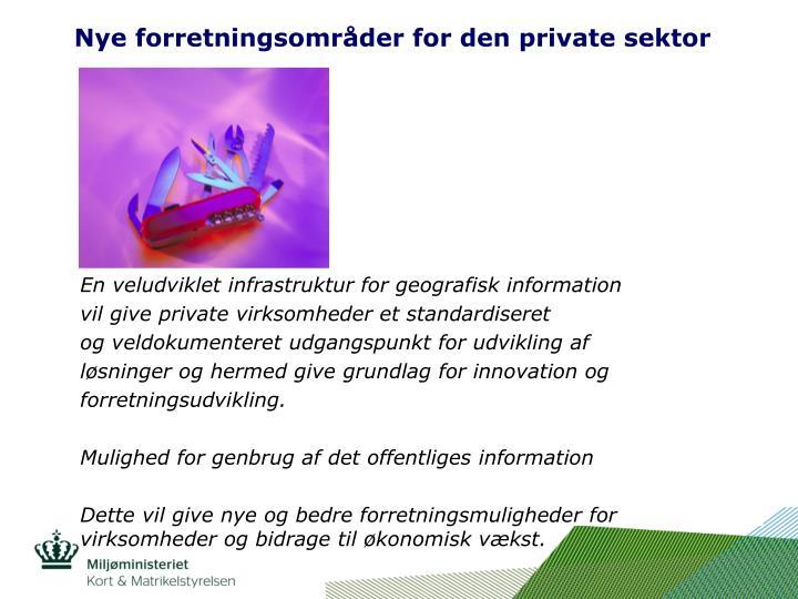 Nye forretningsområder for den private sektor
