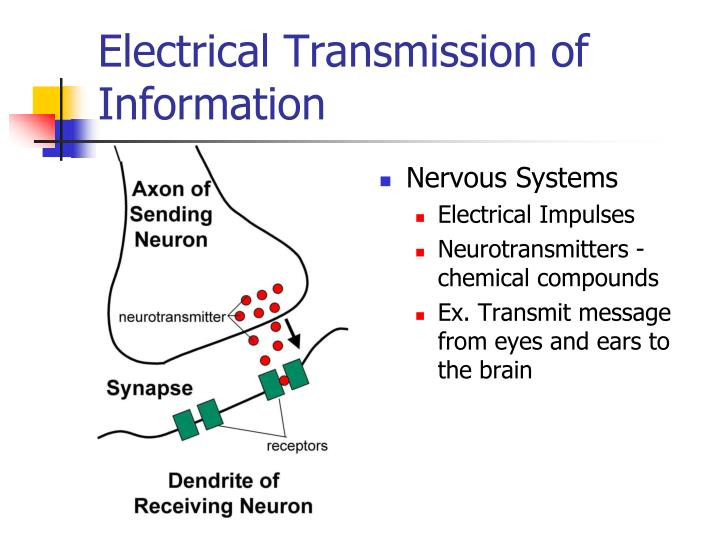 Electrical Transmission of Information