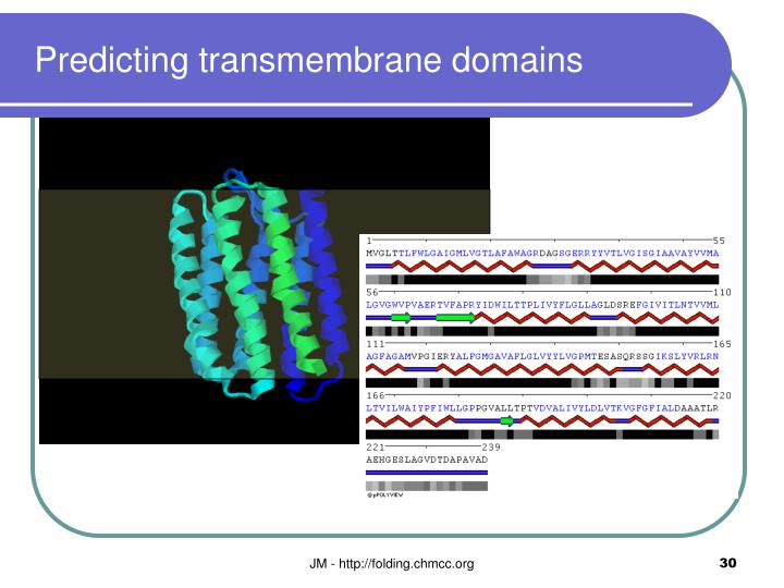 Predicting transmembrane domains