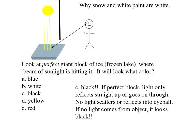 Why snow and white paint are white.