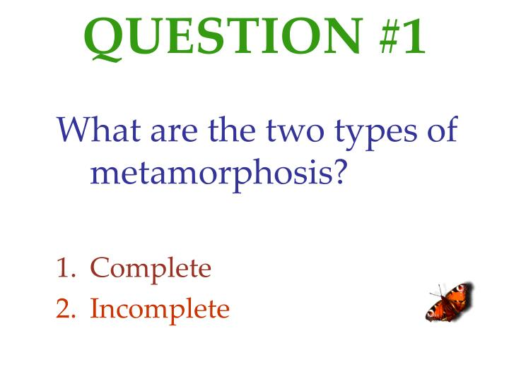 QUESTION #1