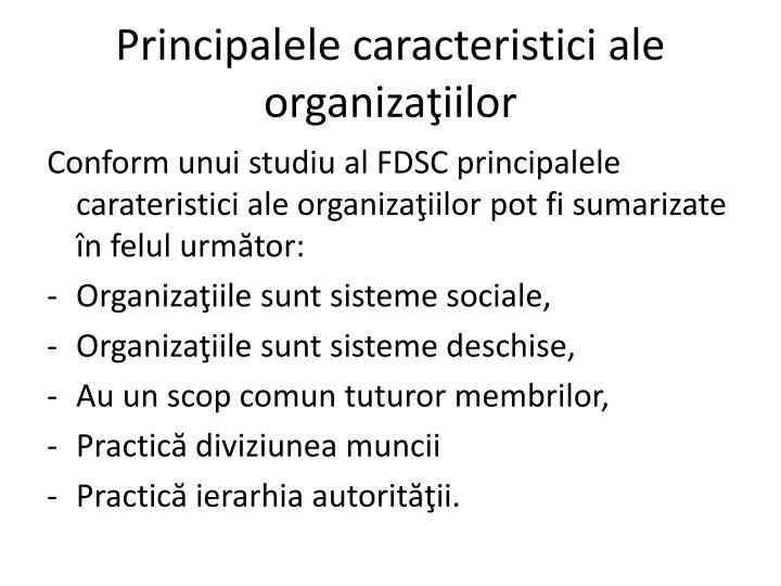 Principalele caracteristici ale organiza