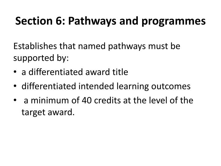 Section 6: Pathways and programmes
