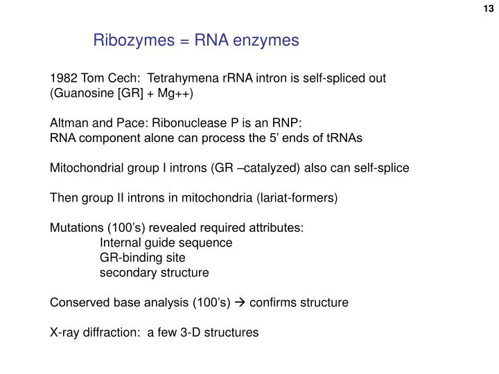Ribozymes = RNA enzymes