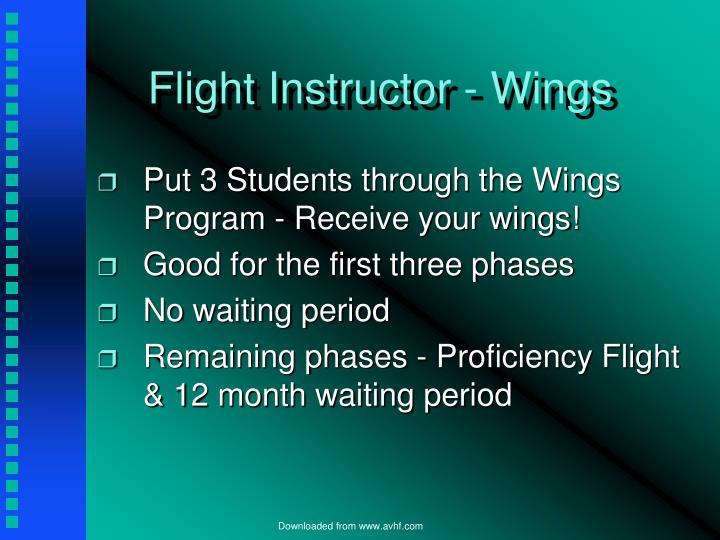 Flight Instructor - Wings
