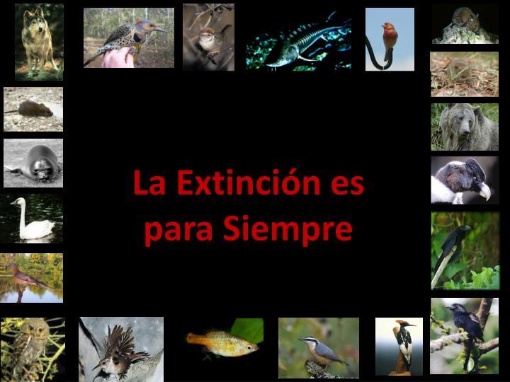 La Extinción es para Siempre