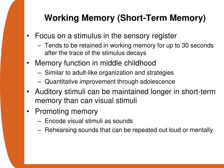 Working Memory (Short-Term Memory)