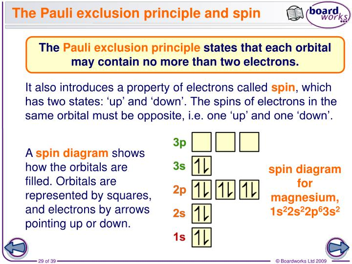 The Pauli exclusion principle and spin