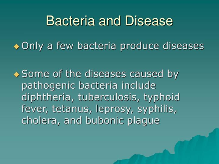 Bacteria and Disease
