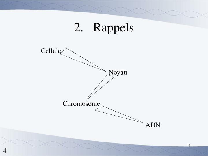 Rappels