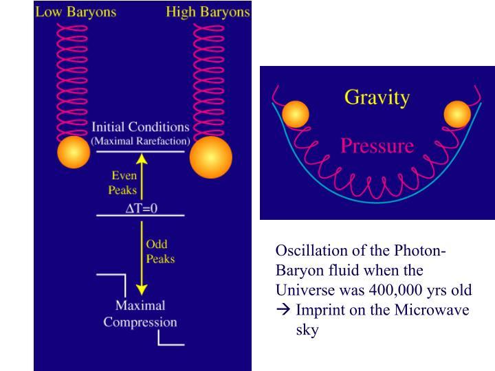 Oscillation of the Photon-