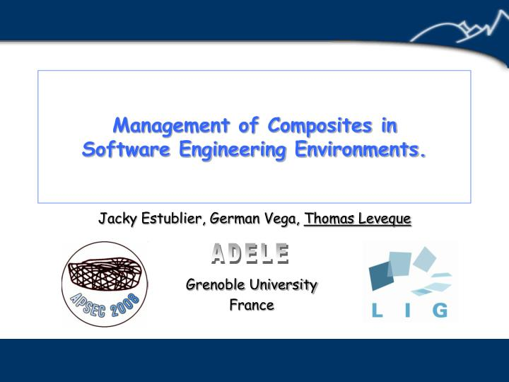management of composites in software engineering environments