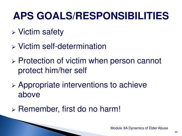 APS GOALS/RESPONSIBILITIES