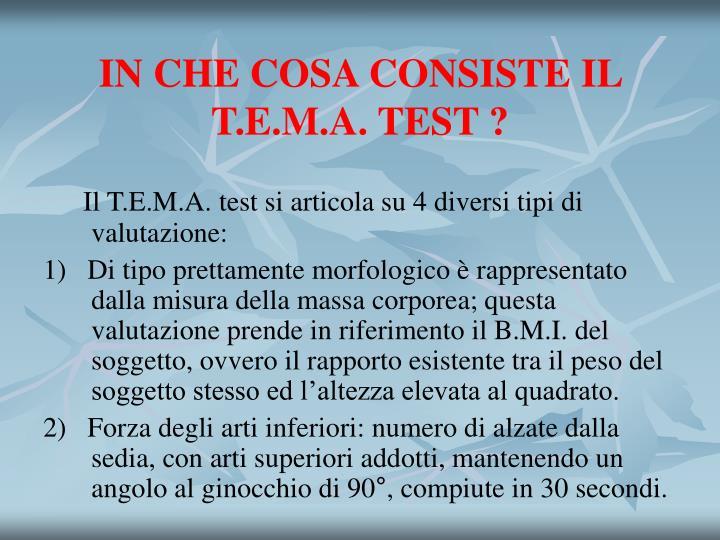 IN CHE COSA CONSISTE IL T.E.M.A. TEST ?