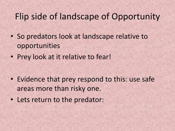 Flip side of landscape of Opportunity