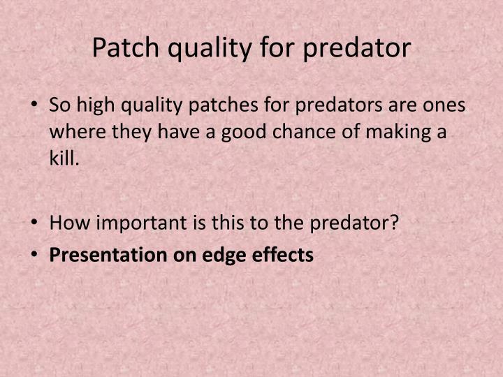 Patch quality for predator