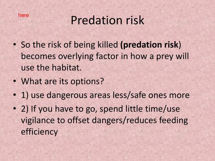 Predation risk
