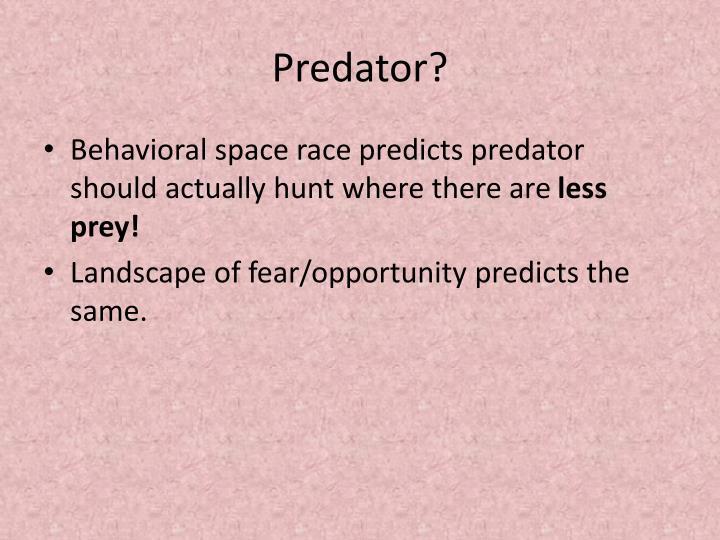 Predator?