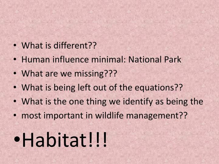 What is different??