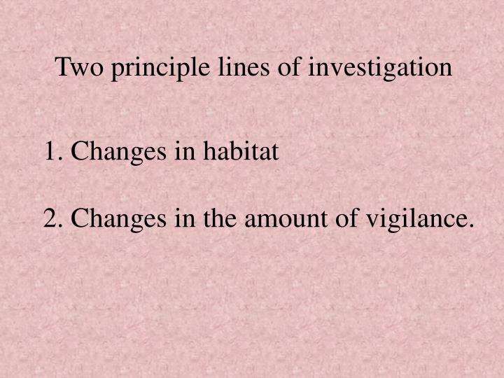 Two principle lines of investigation