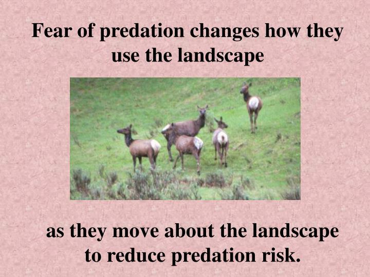 Fear of predation changes how they