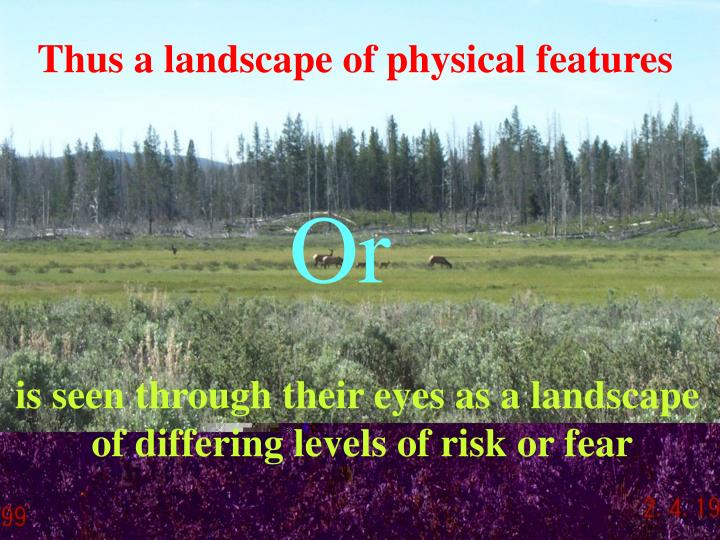 Thus a landscape of physical features