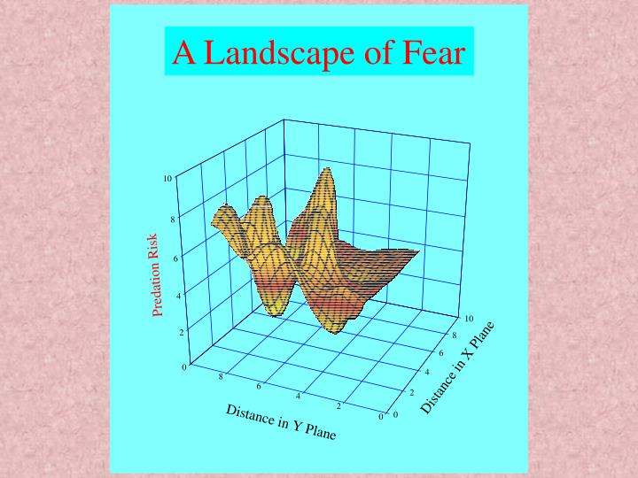 A Landscape of Fear