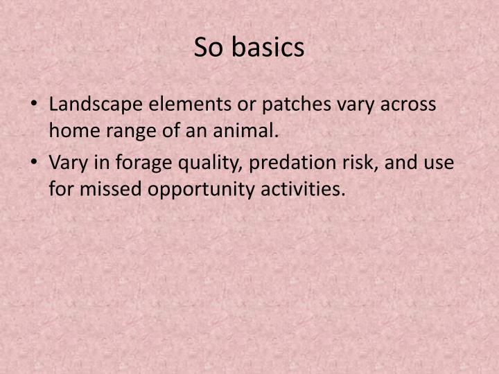 So basics