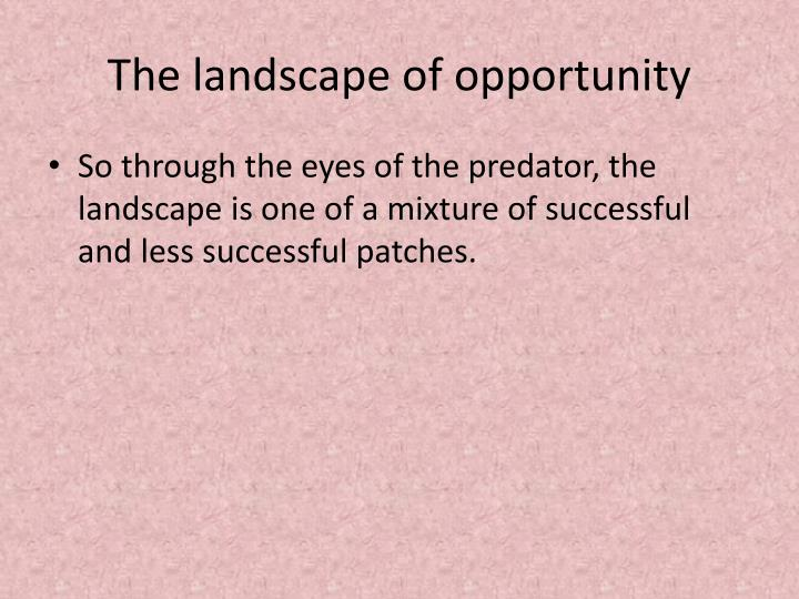 The landscape of opportunity