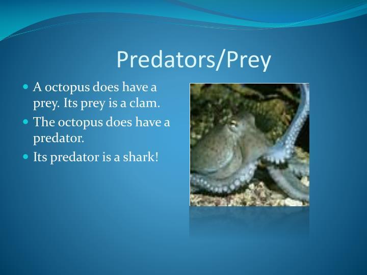 Predators/Prey