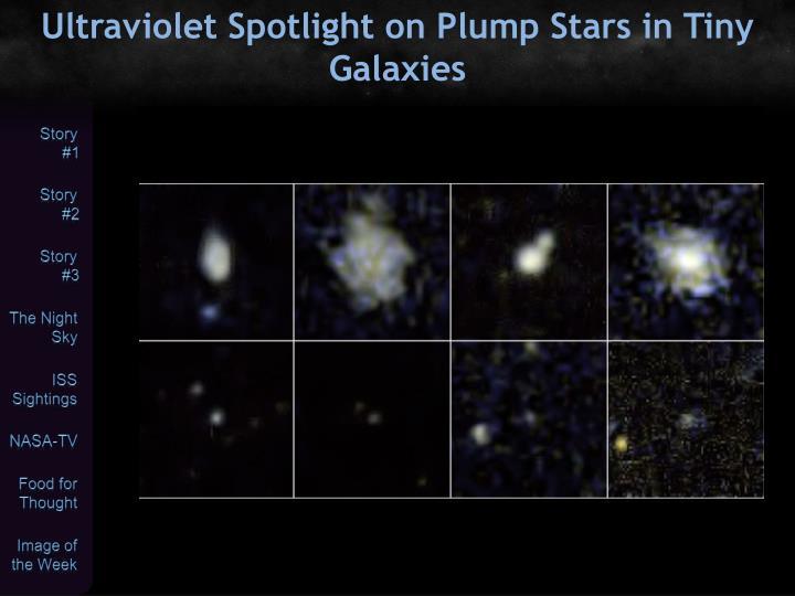 Ultraviolet Spotlight on Plump Stars in Tiny Galaxies