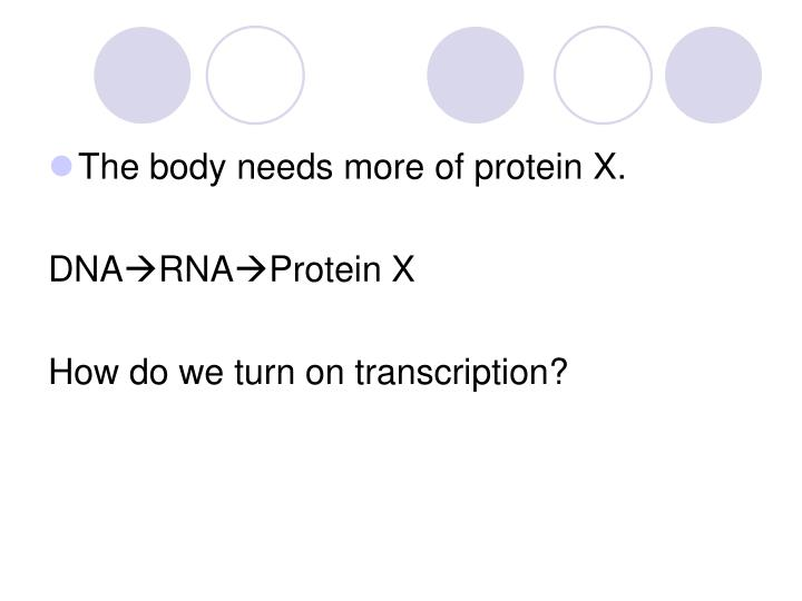The body needs more of protein X.
