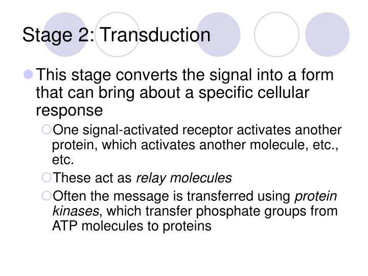 Stage 2: Transduction