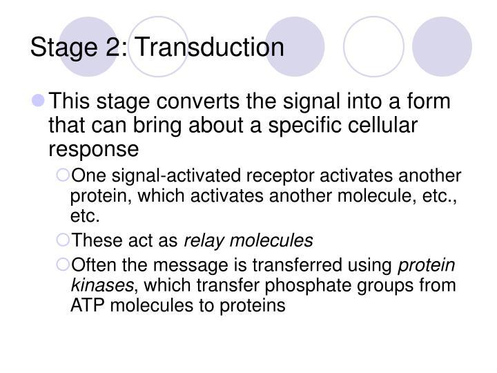 Stage 2: Transduction
